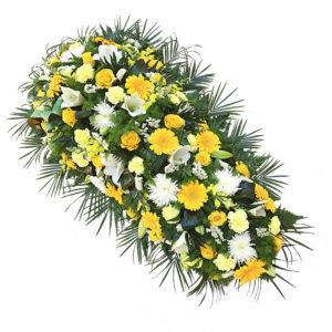 Dessus de Cercueil Boréalis